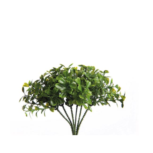 Decoratie steekgroen Buxus